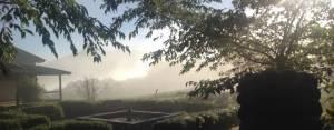 RITIRO ZEN APERTO A TUTTI @ Sanboji Tempio dei Tre Gioielli